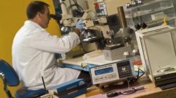 Centerline Specialty processes